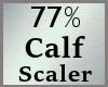 77% Calf Calves Scale MA