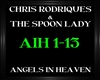 Spoon Lady ~ Angels In H
