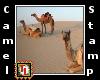 camel stamp