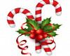 Delano Christmas 2