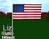 USA Flag Anim.| 4 july