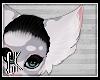 CK-Cora-Ears 3