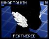FeatheredCheekTuftM