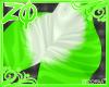 Zitta 0.2 | Bottom F/A