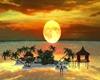 Sunset Island <3