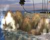 Water Stone Splash