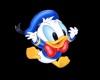 *SD* Donald Head Sig