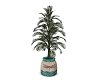 Boho Potted Palm Tree