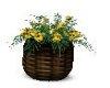Fall Sunflowers Planter