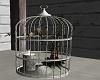 (GT)Deco birdcage
