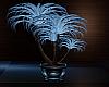 Serenity Blue Plant