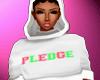 AKA Pledge Hoodie