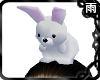 Head Bunny White