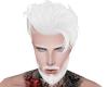 Head with white beard