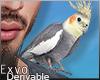 Parrot Sdr. M :ᚠ: Drv!