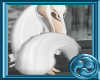 +One kitsune tail blanc+