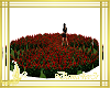 jardin flores rojas