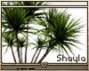 ~S~ Simple Plant 6
