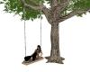 {K} Anim TreeSwing 6pos