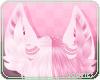 🎀Candi | Ears 2