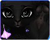 Oxu | Poodle Furry Black