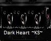 Dark Heart Club