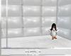 [NSD] Asylum29 animated