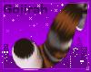 Andis' Sleek Tail