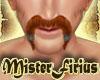 Fili Mustache Auburn