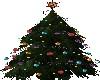 Skys Christmas Tree3