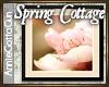 Cottage Floral Art