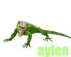 iguana aciones