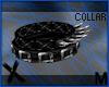X Darling Collar M