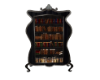 Witch's Book Case