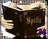 LiiN Spell Book