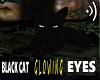Black Cat *Animated