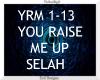You Raise Me Up ~ Selah