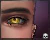 [T69Q] Heartless eyes.