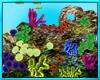 Under Water Coral Rock