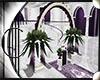 .:C:.Purple Wedding Arch