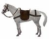 White. Horse.