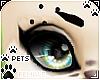 [Pets] Eyebrow R | black