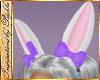 I~Lilac Bows+Bunny Ears