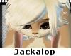 Baby Furry Head