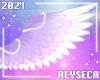 A✦ Lyra wings v1
