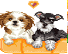 HW: My Doggie Pals