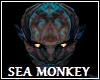 Sea Monkey Head