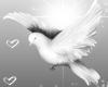 Wedding Dove Left Side