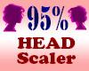 Resizer 95% Head