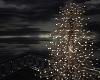 Wht. Lights Outdoor Tree